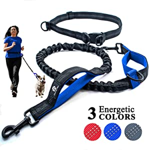 Chunky Paw Hands Free Dog Leash for Running Sweepstakes