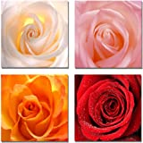 The Decor Shop - Canvas Prints Four Colours Rose Pictures on Canvas Wall Art Framed Modern Decor Paintings Giclee Artwork for Home Decoration 12x12inch