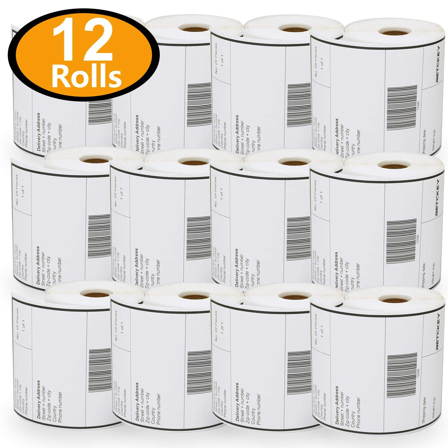 12 Rolls 4'' x 6'' Direct Thermal Printing Blank Shipping Labels for Zebra 2844 Zp-450 Zp-500 Zp-505,250 Labels per Roll