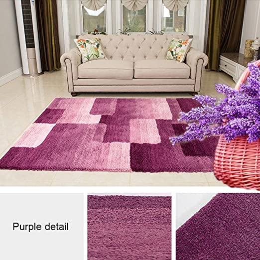 Amazon.com: Interior carpet Rectangular Rug, Modern Simple Living ...