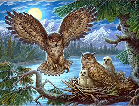 Owl Diamond Painting,5D Full Diamond Painting Kits for Adults with 1Pack Diamond Painting Tools Kits for Home Wall Decor