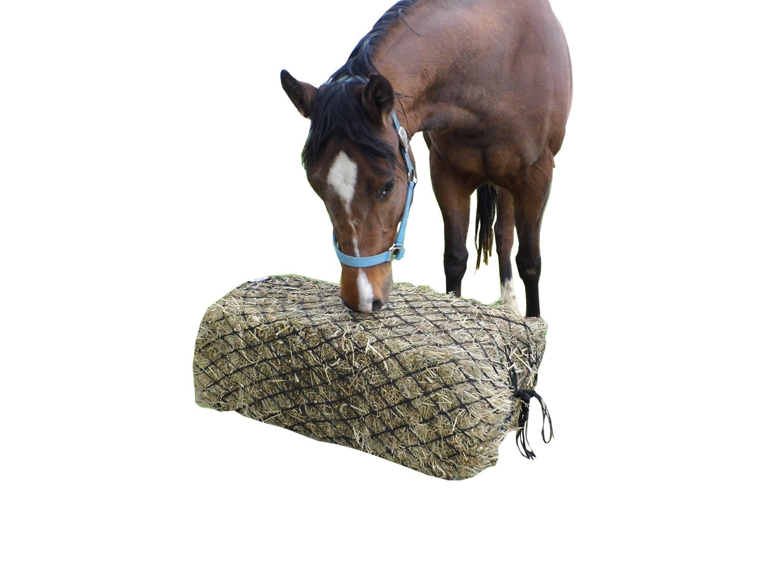 Derby Originals 57'' Hankering Horse Slow Feed Poly Rope Full Bale Hay Net with 2x2'' Holes