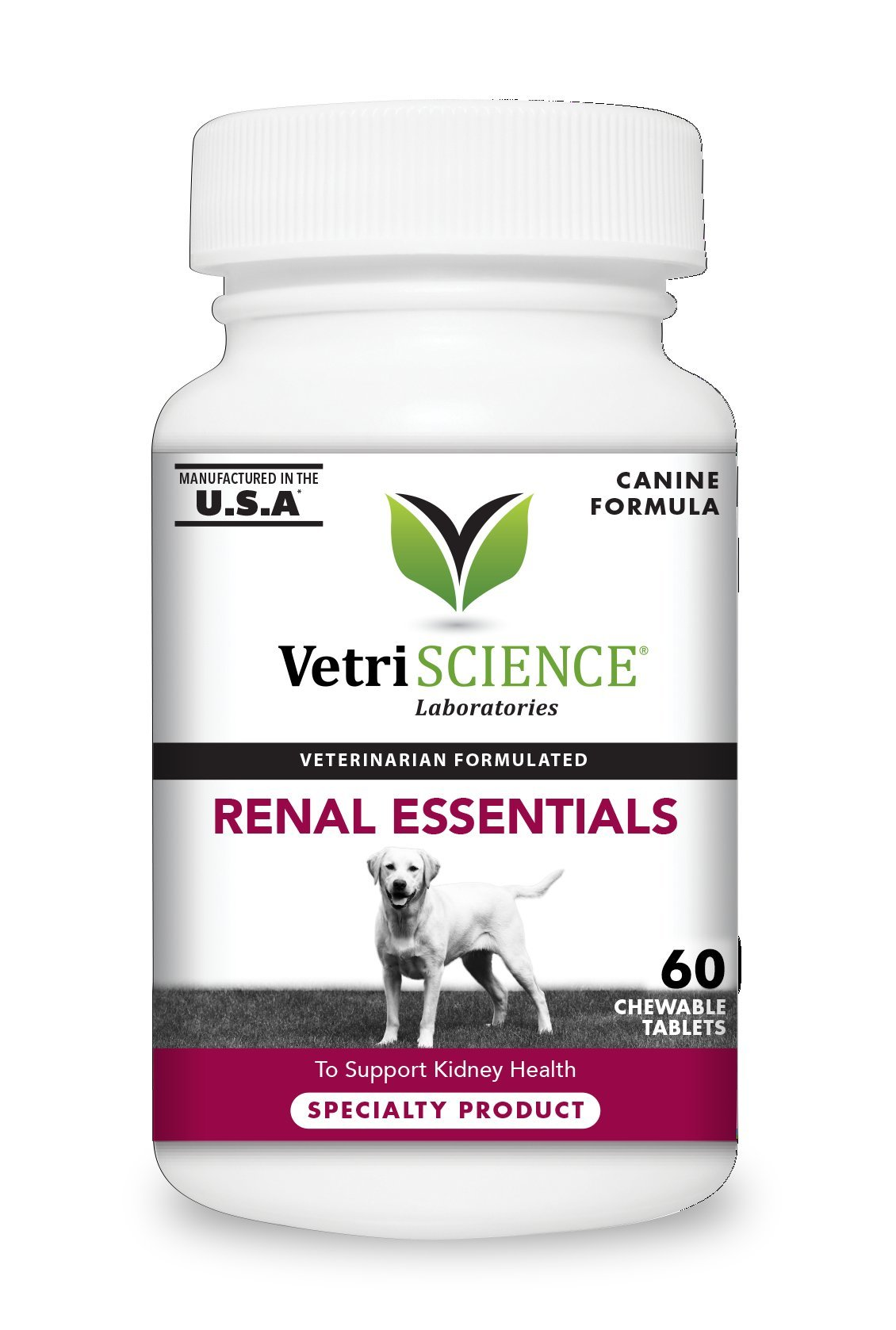 VetriScience Laboratories Renal Essentials Kidney Health Support for Dogs, 60 Chewable Tablets