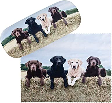 von Lilienfeld Estuche Gafas Funda Ligeramente Estable Colorido Regalo Mujer Hombre Motivo Perro Labrador retriever: Amazon.es: Ropa y accesorios