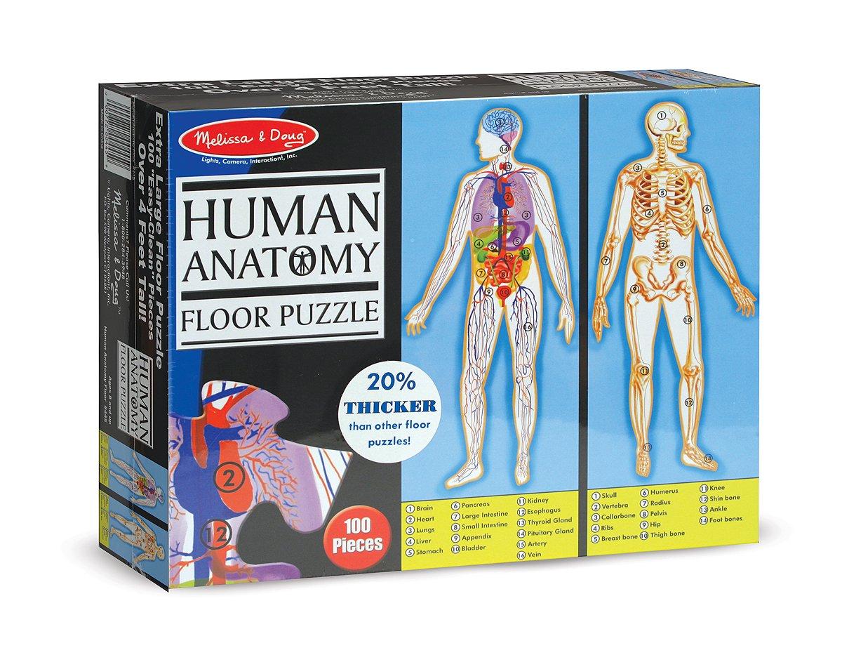 Amazon.com: Melissa & Doug Human Anatomy 2-Sided Jumbo Jigsaw Floor Puzzle (100 pcs, over 4 feet tall): Melissa & Doug: Toys & Games