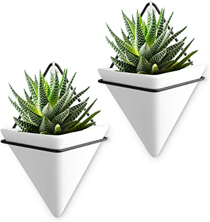 Air plant holder Concrete geometric succulent pots   FREE SHIPPING with tracking Wall decor Music hanging planter