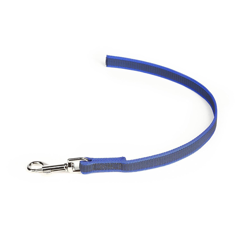 Julius-K9 Color & Gray Correa, Azul y Gris, 2 cm: Amazon.es ...