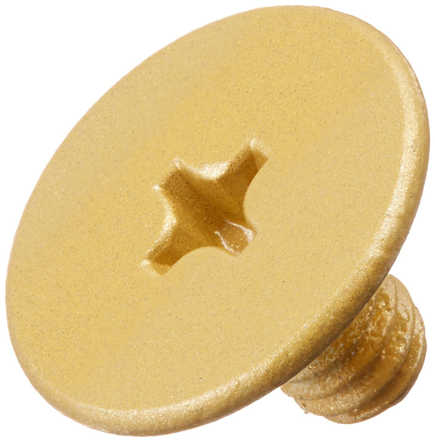 LCN 4040SE159SB 4040SE-159 696 Sprayed Brass Arm Screw Top Notch Distributors