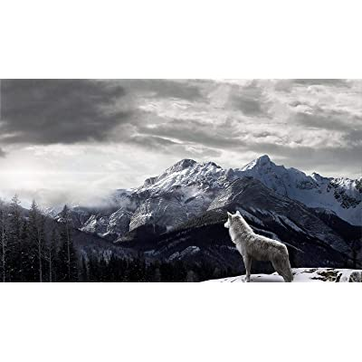 Adult Classic Puzzle 1000 Pieces DIY Arctic Wolf Looking Out into The Snowy Mountains Wooden Puzzle Festival Gift Wall Decoration Mural Home Art 70x50cm: Toys & Games