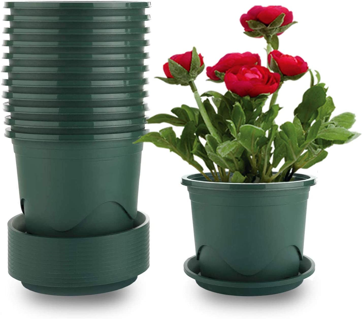 MOHENA Plant Pots with Saucers - 0.5 Gallon 6.5 Inch Plastic Dark Green Set of 12, Root-Control Nursery Seedling Planter Garden Flower Pot Container for Indoor Outdoor Bonsai Plants, Aloe, Herb