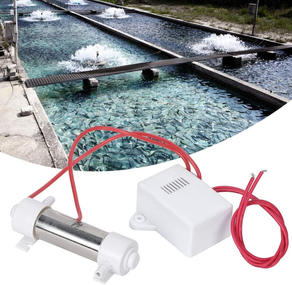 BigBig Style Portátil Generador de Ozono Agua de Piscina ...