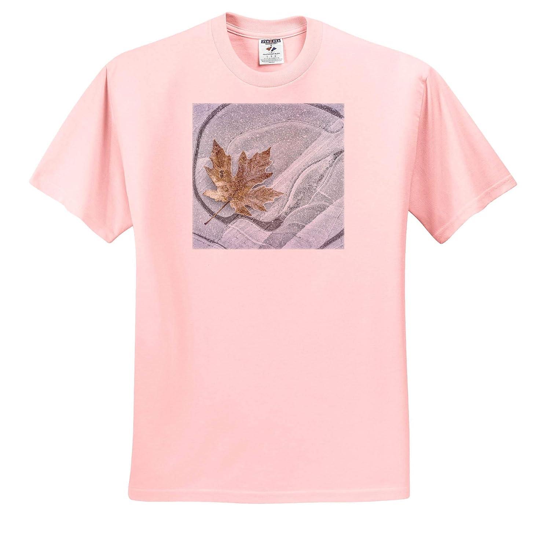 USA Seabeck Washington State 3dRose Danita Delimont - Adult T-Shirt XL Frosty Maple Leaf on ice Winter ts/_315096