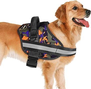 PIXNOR Arnés para perro, arnés de chaleco de seguridad para perros ...