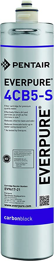 Package Of 5 Everpure 4CB5-S EV9617-21 Replacement Filter Cartridge