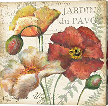 Spice Poppies Histoire Naturelle II by Tre Sorelle Studios Canvas Art Wall Picture, Gallery Wrap
