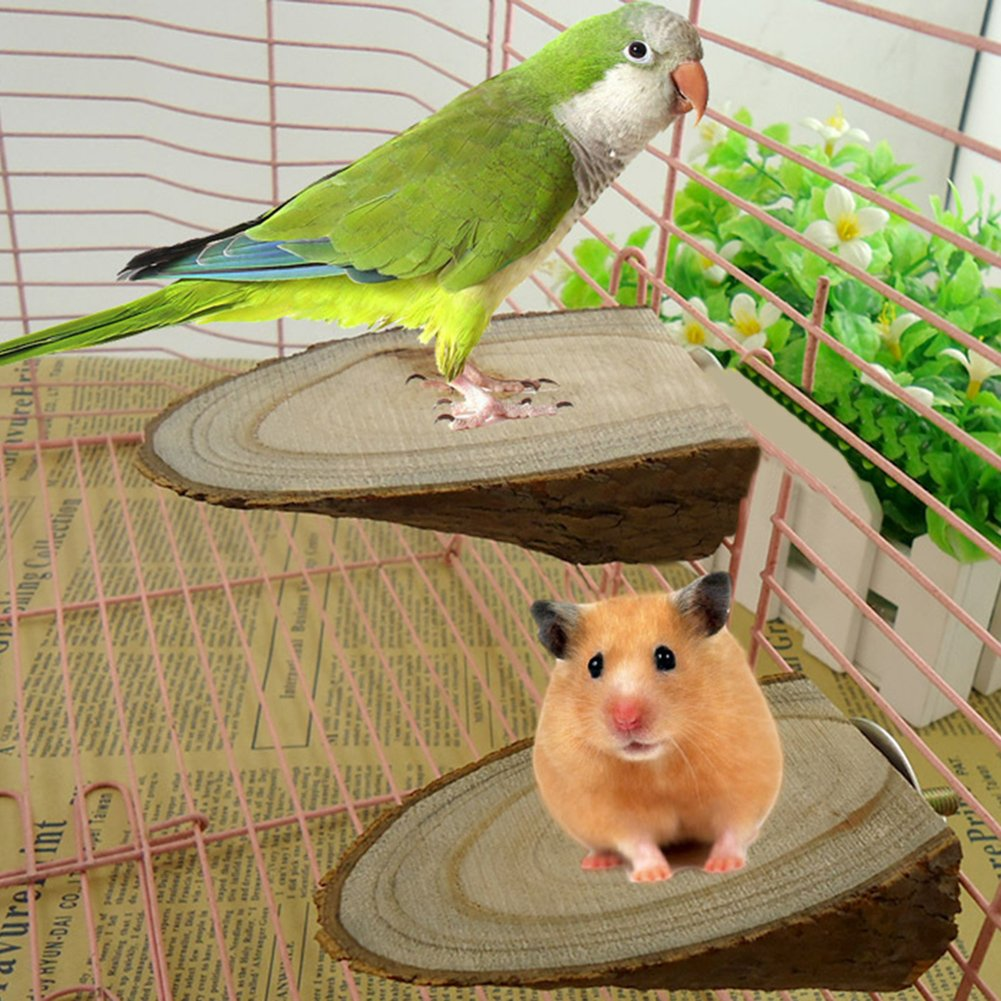 Afco Pet Parrot Wood Platform Stand Rack Toy Hamster Branch Perches for Bird Cage Brain Game Training Tool