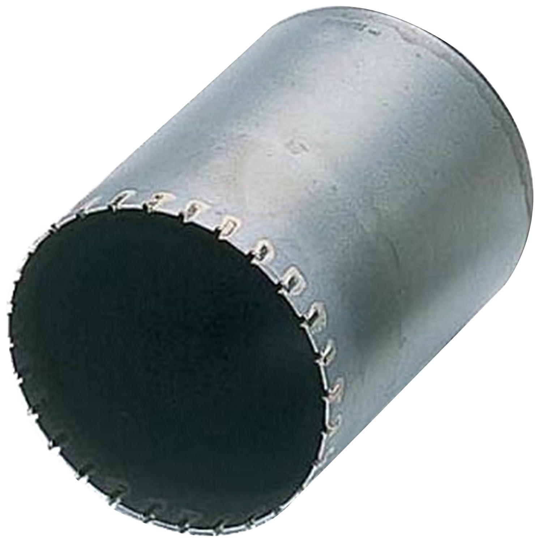 BOSCH(ボッシュ) ポリクリックシステム ALCコアカッター160mmφ PAL-160C B00DFHA1TU 160mm 160mm