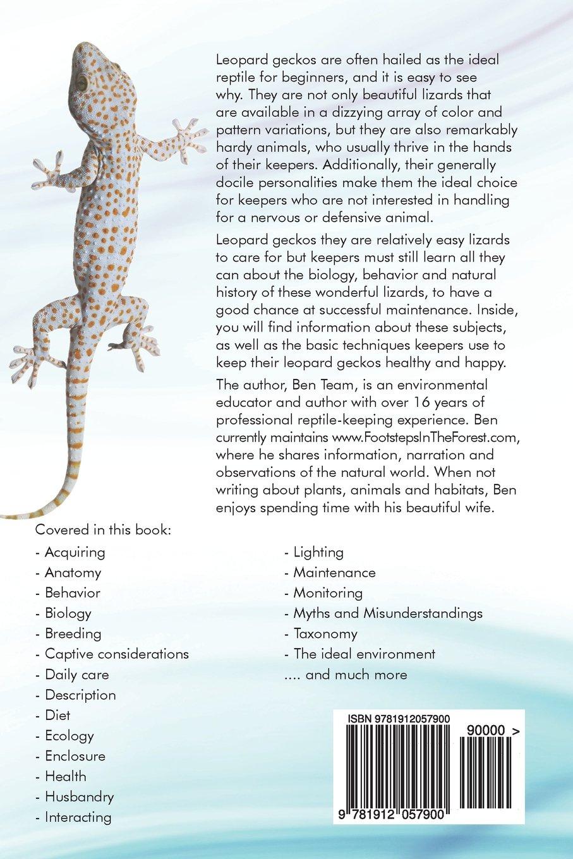tokay gecko price list