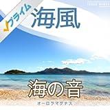 穏やかな海 (自然音)