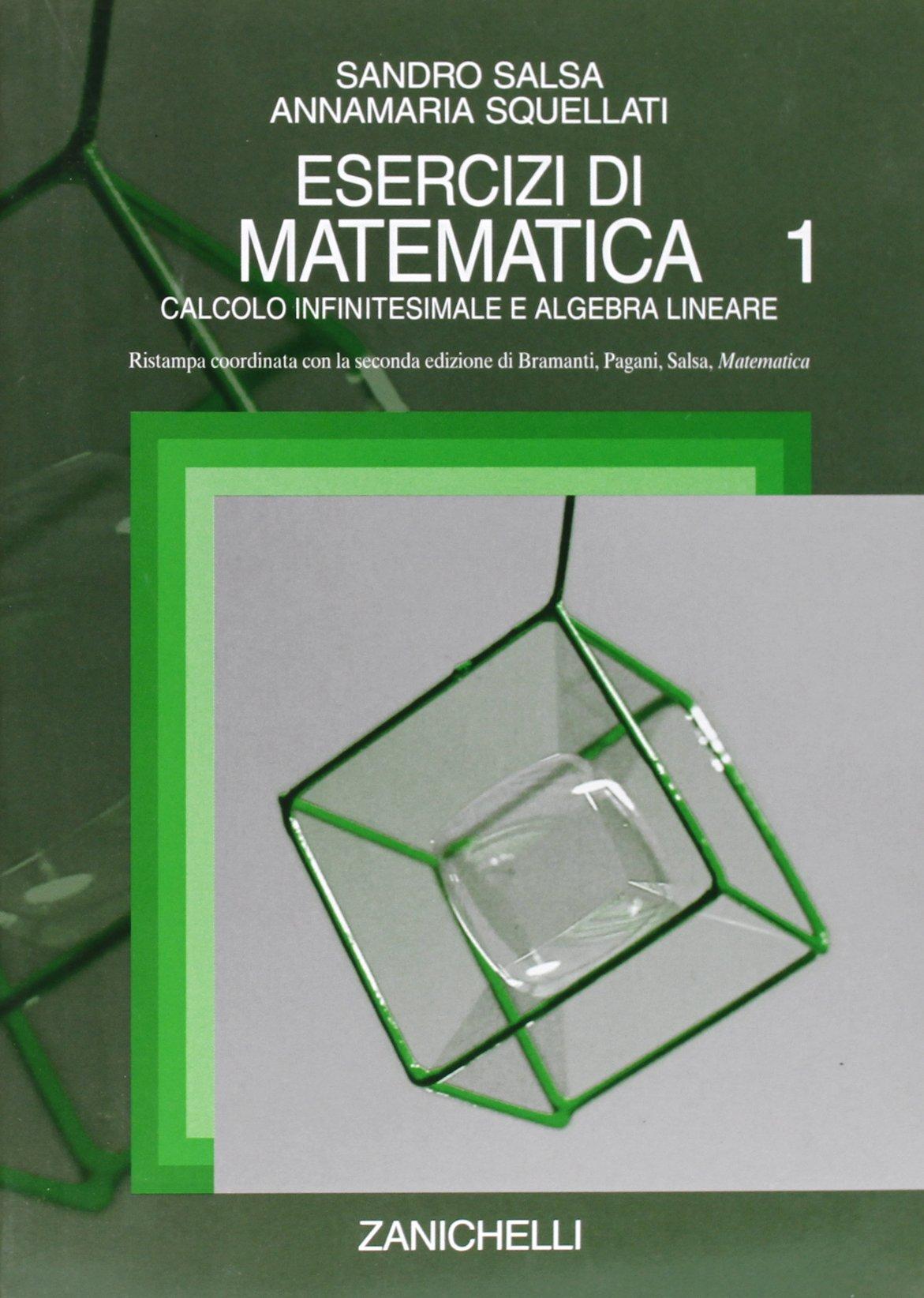 Analisi Matematica 1 Bramanti Pagani Salsa Zanichelli Pdf