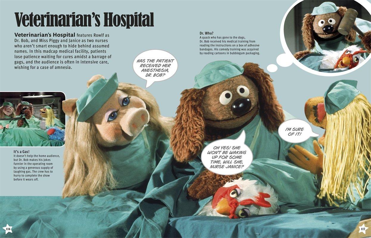 Muppets Character Encyclopedia by DK Publishing Dorling Kindersley (Image #5)