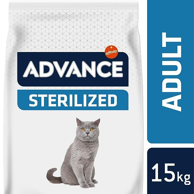 Advance Adult recurvo & de Cebada, 1er Pack (1 x 15000 g): Amazon.es: Productos para mascotas
