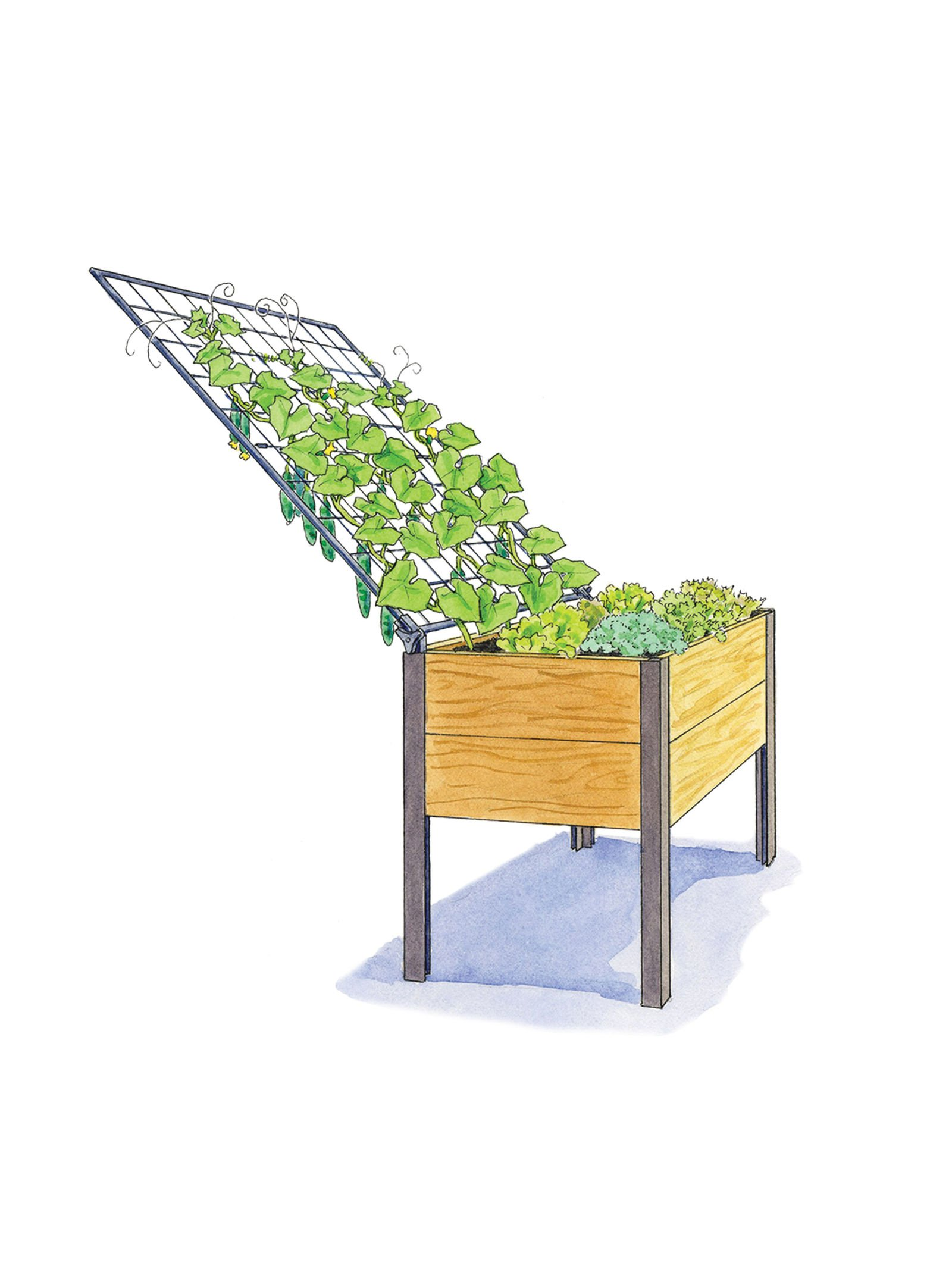Elevated Cedar Planter Box and Space-Maker Pivoting Trellis Set, 28217; x 48217; by Gardener's Supply Company