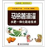 马铃薯滴灌水肥一体化栽培技术