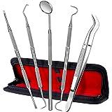ElleSye Kit Igiene Dentale 5PZ Strumenti Dentisti Ablatore Dentistico in Acciaio Inox per Cura Orale Domestico Rimozione Tartaro, Placa, Residui Cibo, Batteri