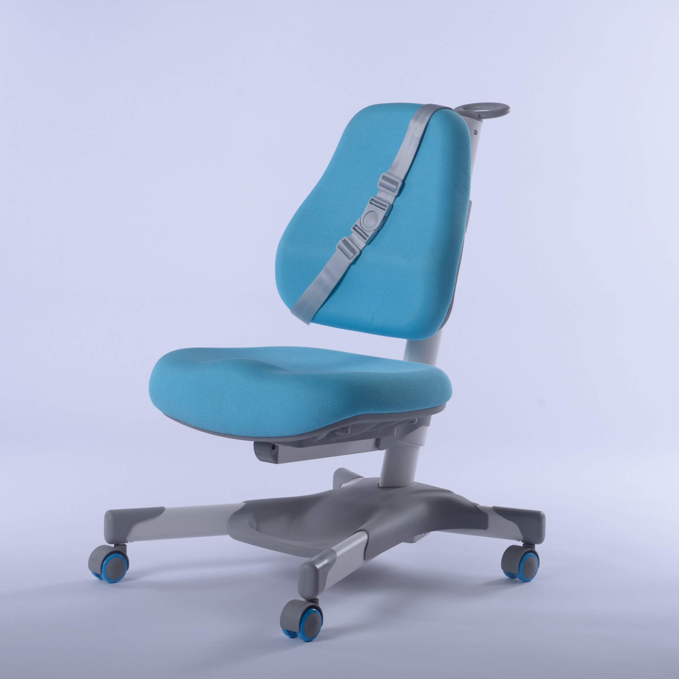 GMYD Height Adjustable Study Ergonomic Chair with Footrest (Blue)