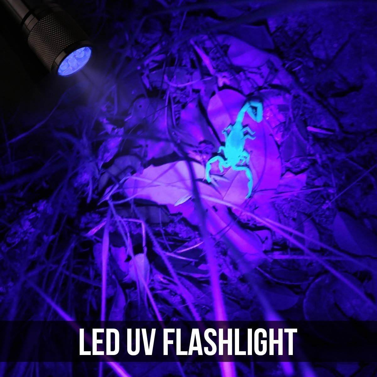 LE Small UV Blacklight Flashlight, Portable Black Light with 9 LEDs, 395nm,  Ultraviolet Light Detector for Invisible Ink Pens, Dog Cat Pet Urine