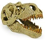 Geoworld T-Rex Skull
