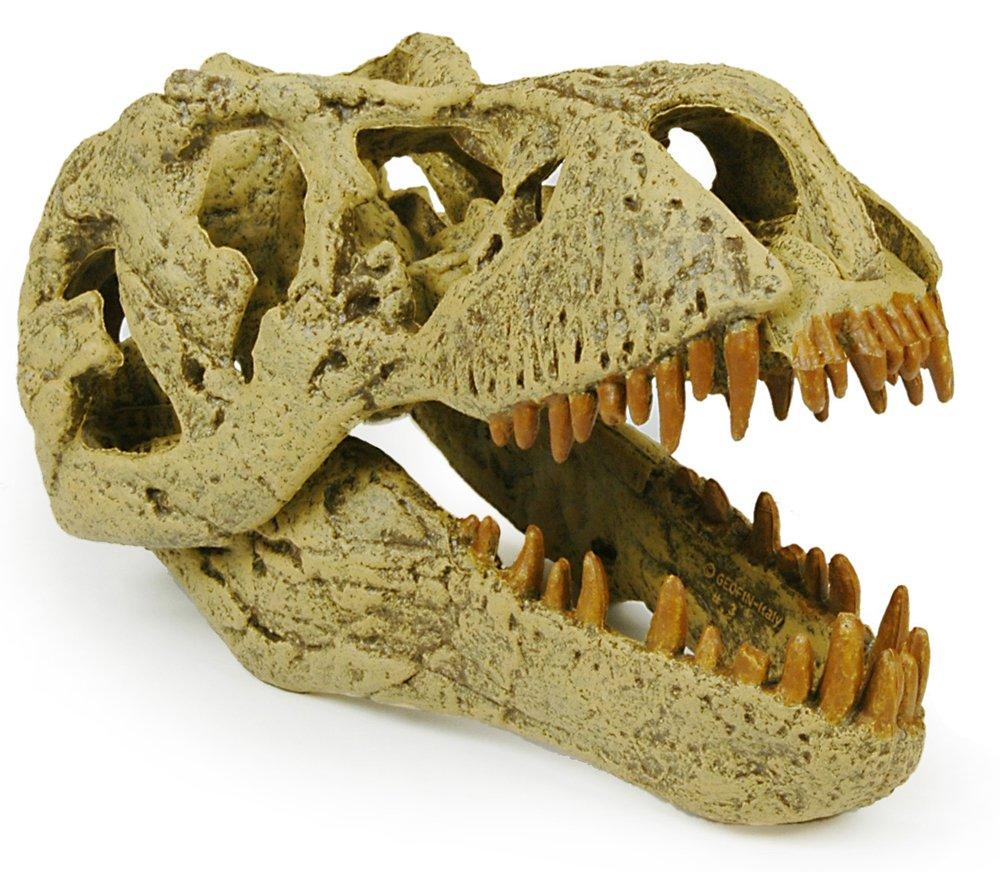 Geoworld T-Rex Skull by Geoworld (Image #1)