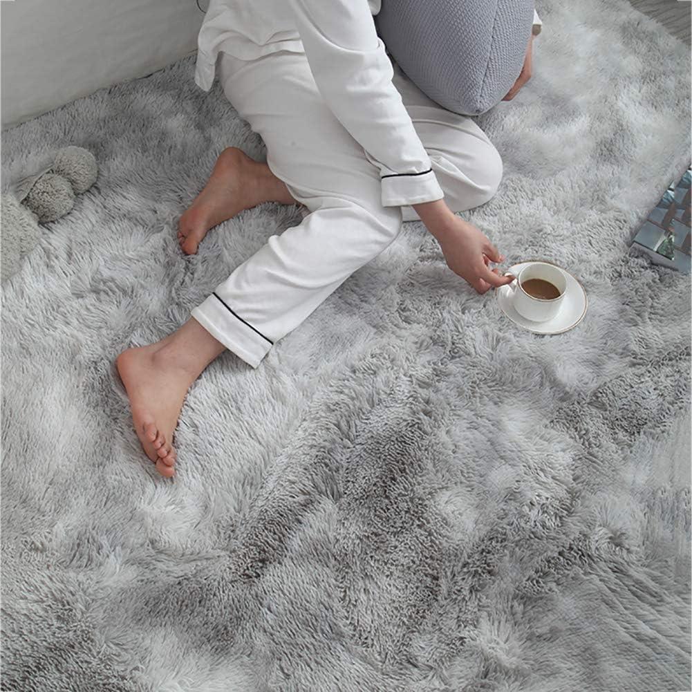 caf/é 60x160cm Super Soft Shag Tapis Salon Couverture Tapis /à Poils Longs Moelleux Tapis Chambre Tapis De Chevet Enfants Jouant Mat Tapis De Sol pour Hallway Kitchen 24x63inch