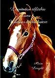 L'équitation réfléchie - Histoires de chuchoteur