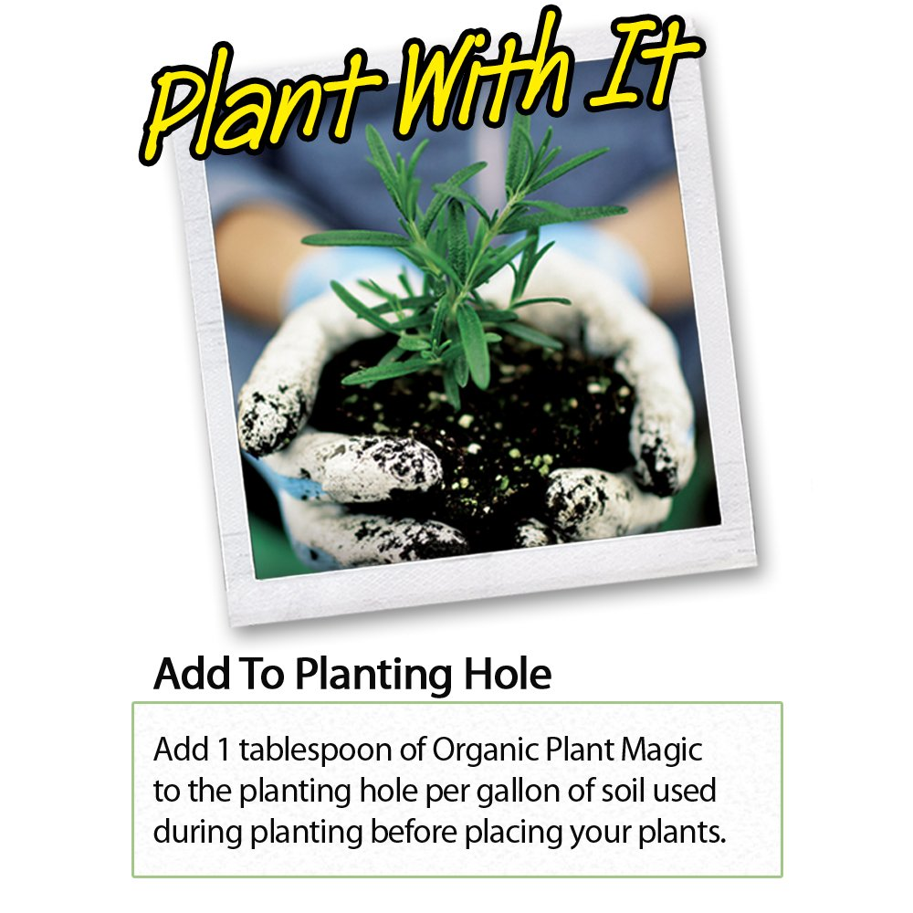 Plant Magic Plant Food 100% Organic Fertilizer - Easy to Use All Purpose for Indoor Houseplants, Outdoor Flowers, Tomatoes and All Vegetables and Trees (also known as instant Compost Tea) 1/2 lb by Organic Plant Magic (Image #4)