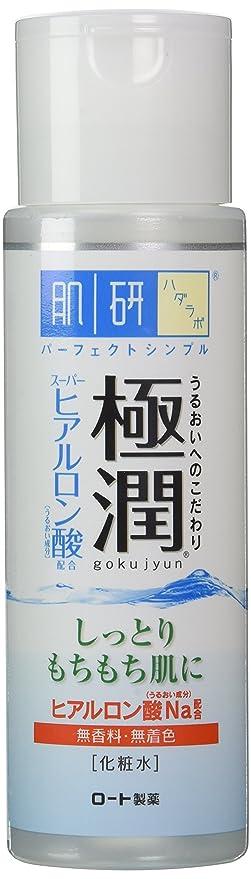 Rohto Hadalabo Gokujyn Hyaluronic Acid Lotion (Moist) - 170ml (japan import)
