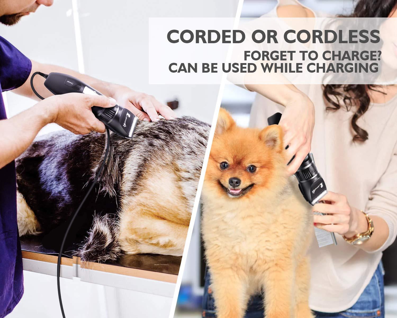 Pecute Schermaschine Für Hunde Katzen 50 DB Leise Haustier Grooming Clipper mit 3H Arbeitszeit, Schnurloser wiederaufladbarer Akku Elektrischer Haarschneider für Hunde Katzen Fellrasierer