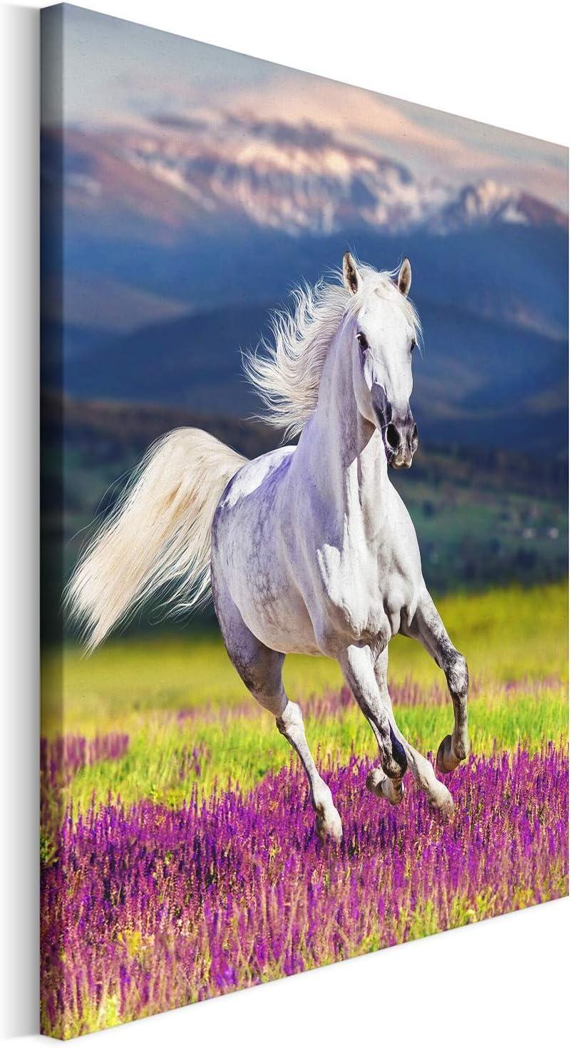 Revolio - Cuadro en Lienzo - impresión artística - Decoracion de Pared - Tamaño: 30x40 cm - Caballo Naturaleza Blanco