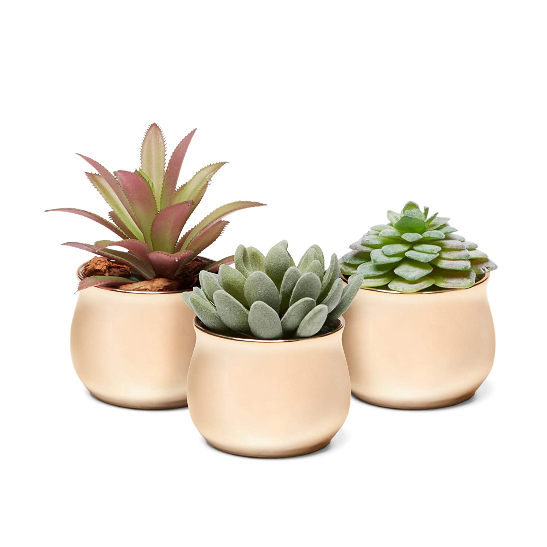 3 Piece Mini Curved Copper Rose Gold Ceramic Succulent Planter Pot Set