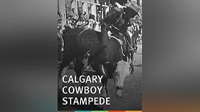 Calgary Cowboy Stampede