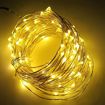 quality design 1ad5a dfda6 Smartlive LED String lights DC 12V 10m 33feet 100 LEDS,Warm White  Waterproof starry string Decor Rope light for  holiday,wedding,party,Christmas