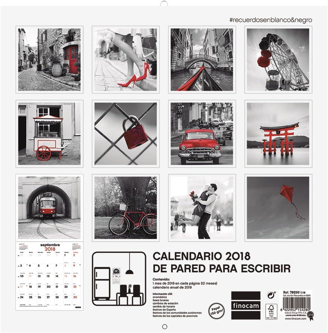 Finocam 780301618 - Calendario de pared 2018, diseño gatitos ...