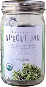 Broccoli Sprout Growing Kit - Includes Mason Jar, 316 Stainless Steel Sprouting Lid, Sprout Stand, and Organic Broccoli Sprouts Seeds - Complete Broccoli Sprout Kit by Handy Pantry and Trellis + Co.