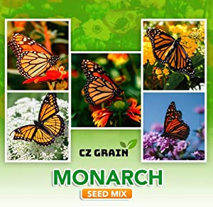 Monarch Butterfly Garden Kit -28 Species of Perennial Milkweed and Wildflower Seeds - If You Grow it Monarchs Will Come - Kids STEM Project - Create a Beautiful Garden Full of Butterflies