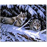 Rihe Paintworks DIY Oil Painting Paint by Number Kits Gifts Wolf King 1620 Inch (Frameless)
