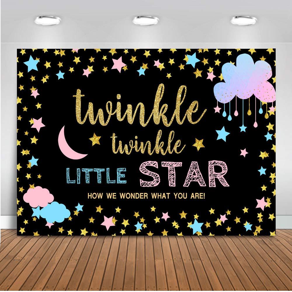 Mehofoto Twinkle Twinkle Littler Star Gender Reveal Backdrop Pink Blue Cloud Photography Background 7x5ft Vinyl Gender Reveal Party Banner Backdrops