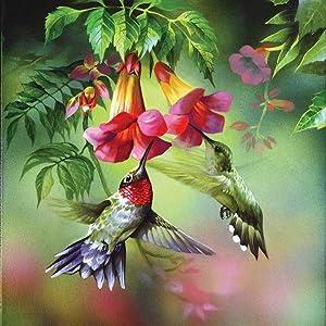 Twzayxr DIY Diamond Rhinestone Painting Kits Embroidery Arts Craft,Wall Decor Birthday, Anniversary, Wedding Gift,Home Decoration Crafts - Hummingbird(13.7X13.7inch)