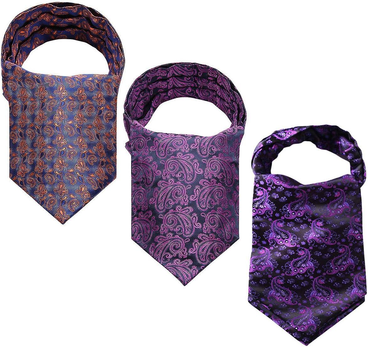 HISDERN Cravat Ascot Tie for Men Wedding Cravat Scarf 3-Pack Combo