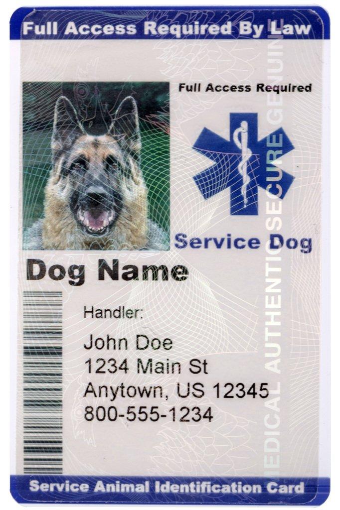 Service Dog Id Card Amazon